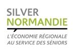 Logo Silver Normandie variantes 4